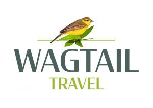 Wagtail Travel
